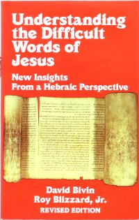 Understanding the Difficult Words of Jesus by David Bivin and Roy Blizzard Jnr
